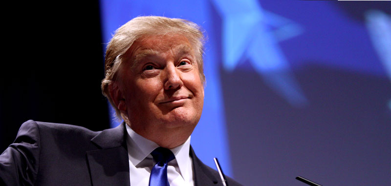 5 Business Lessons From Donald Trump